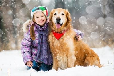 assurance-animaux-pas-cher